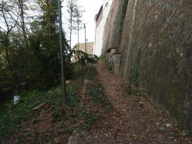 obnovenie hradného kopca