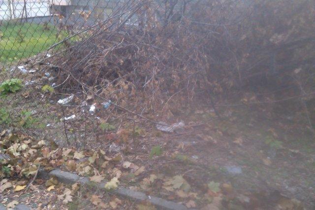 Neupravený priestor, skládka odpadov